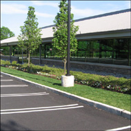 American Beauty Landscape Design Commercial Maintenance Projects
